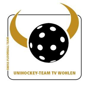 UHT TV Wohlen