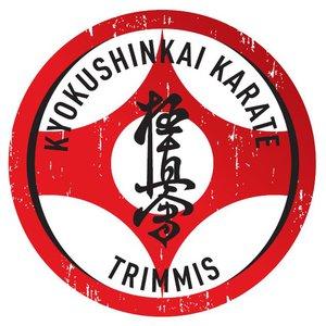 Karate Center Trimmis