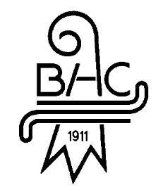 Basler Hockey Club 1911