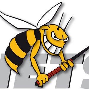 Hornets Regio Moosseedorf Worblental