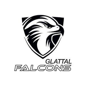 UHC Glattal Falcons