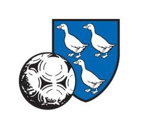 FC Echichens