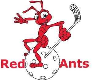 Red Ants Rychenberg Winterthur