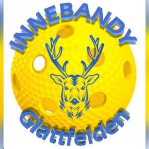 INNEBANDY Glattfelden - Die Unihockeyschule