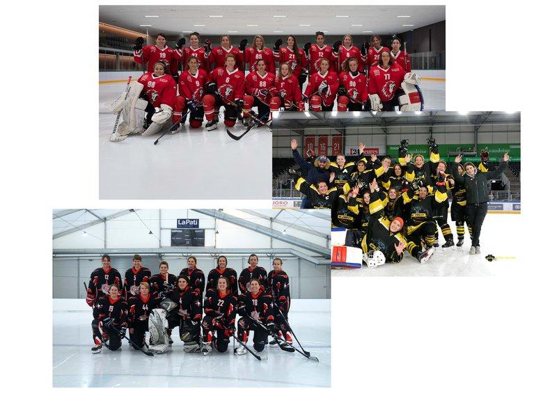 Hockey Clubs Féminins Lausannois
