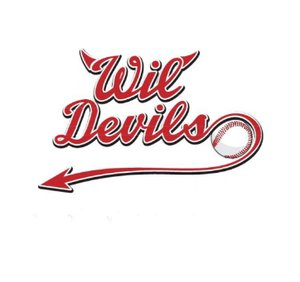 Baseball Verein Wil Devils