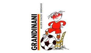 Grandinani