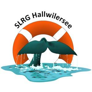 SLRG Hallwilersee