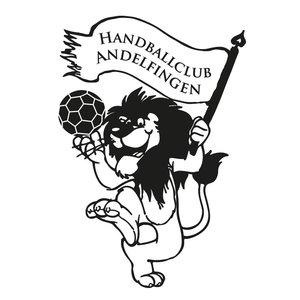 HC Andelfingen