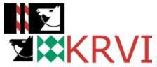 KRV Interlaken