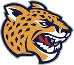 American Football Club Zofingen Cheetahs