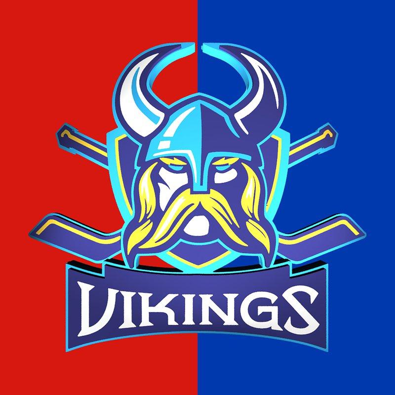Vikings Hockey Team
