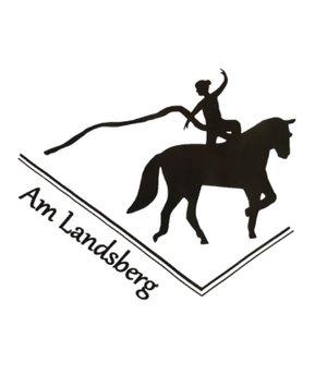 Voltigegruppe Am Landsberg