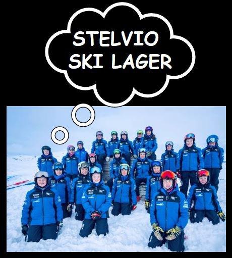 Flimserstein Race Team