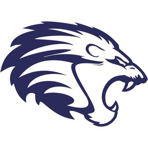 Zürich Lions Lacrosse