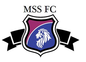 FC MSS Holding AG