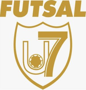 Union7 Futsal Zuerich