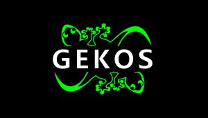 Gekos Showteam
