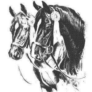 Société de Cavalerie de La Chaux-de-Fonds