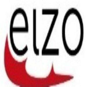 ELZO: Eislaufclub Züri Oberland