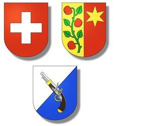 Pistolenschützen Zürich-Affoltern
