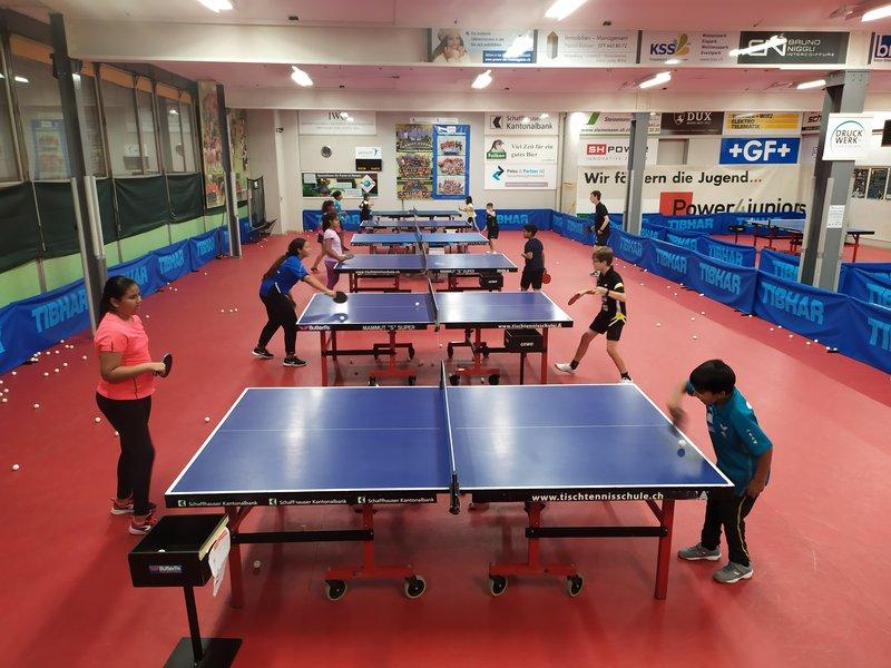 Tischtennis Club Neuhausen