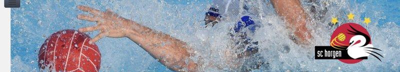 Schwimmclub Horgen