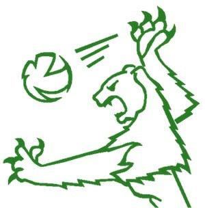 Volley Grüningen