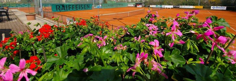 Tennis-Club Liestal