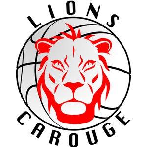 Lions de Carouge Basket