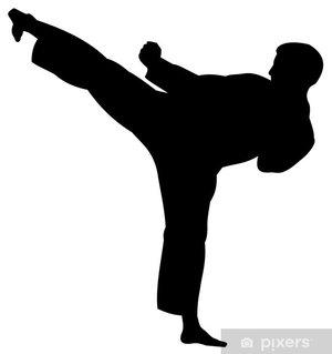 Karateverein Schötz/Wauwil
