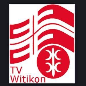 TV Witikon