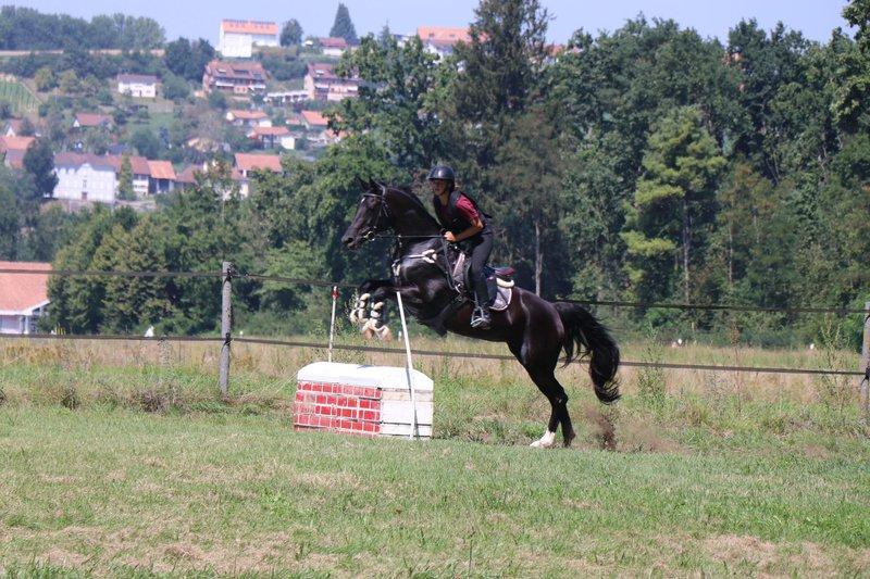 Société de cavalerie du Vully et environs