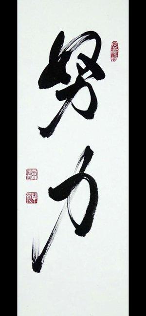 Doryoku Karate Do