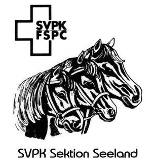 Schweizerischer Verband für Pony und Kleinpferde Sektion Seeland
